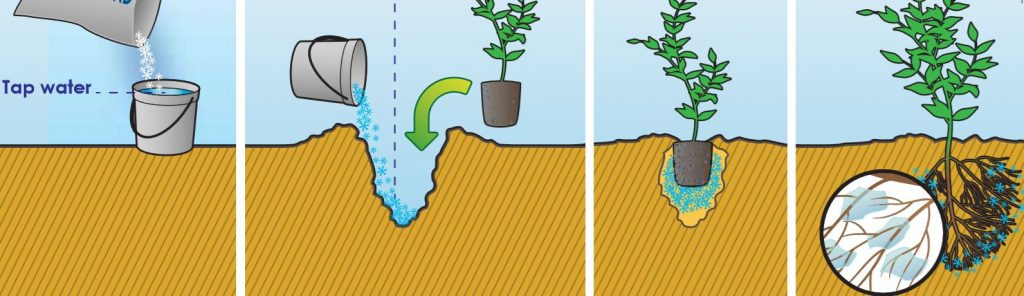 Công ty TNHH Chớp Ngay Capture-1024x296 Hạt trữ nước chống hạn ERISORB Chống hạn ERISORB Trữ nước  SAP Hạt trữ nước chống hạn ERISORB hạt siêu giữ nước