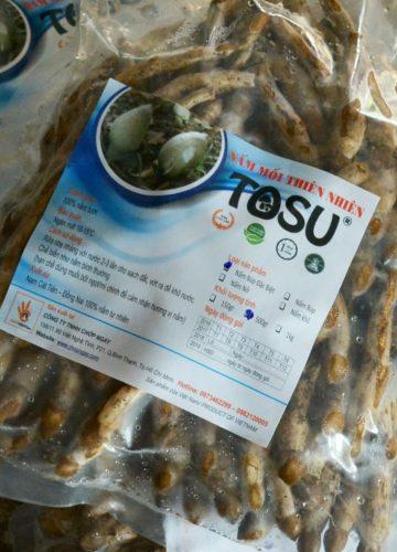 Công ty TNHH Chớp Ngay hinh-nam-moi-tosu-2-min-360x500 Cung cấp đặc sản nấm mối Nấm mối tosu