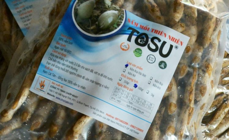 Công ty TNHH Chớp Ngay hinh-nam-moi-tosu-2-min-750x460 Cung cấp đặc sản nấm mối Nấm mối tosu